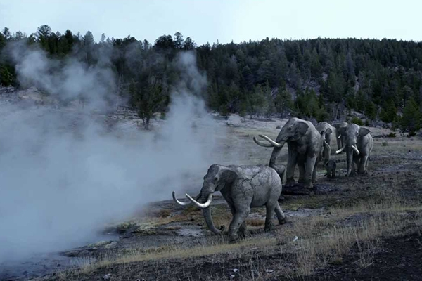 ice age hunters destroyed forests throughout europe leiden university