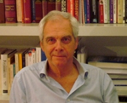 Prof.dr. Stan Maes
