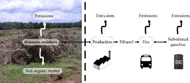 Biomass residues decomposed on fields or removed and converted into bioenergy
